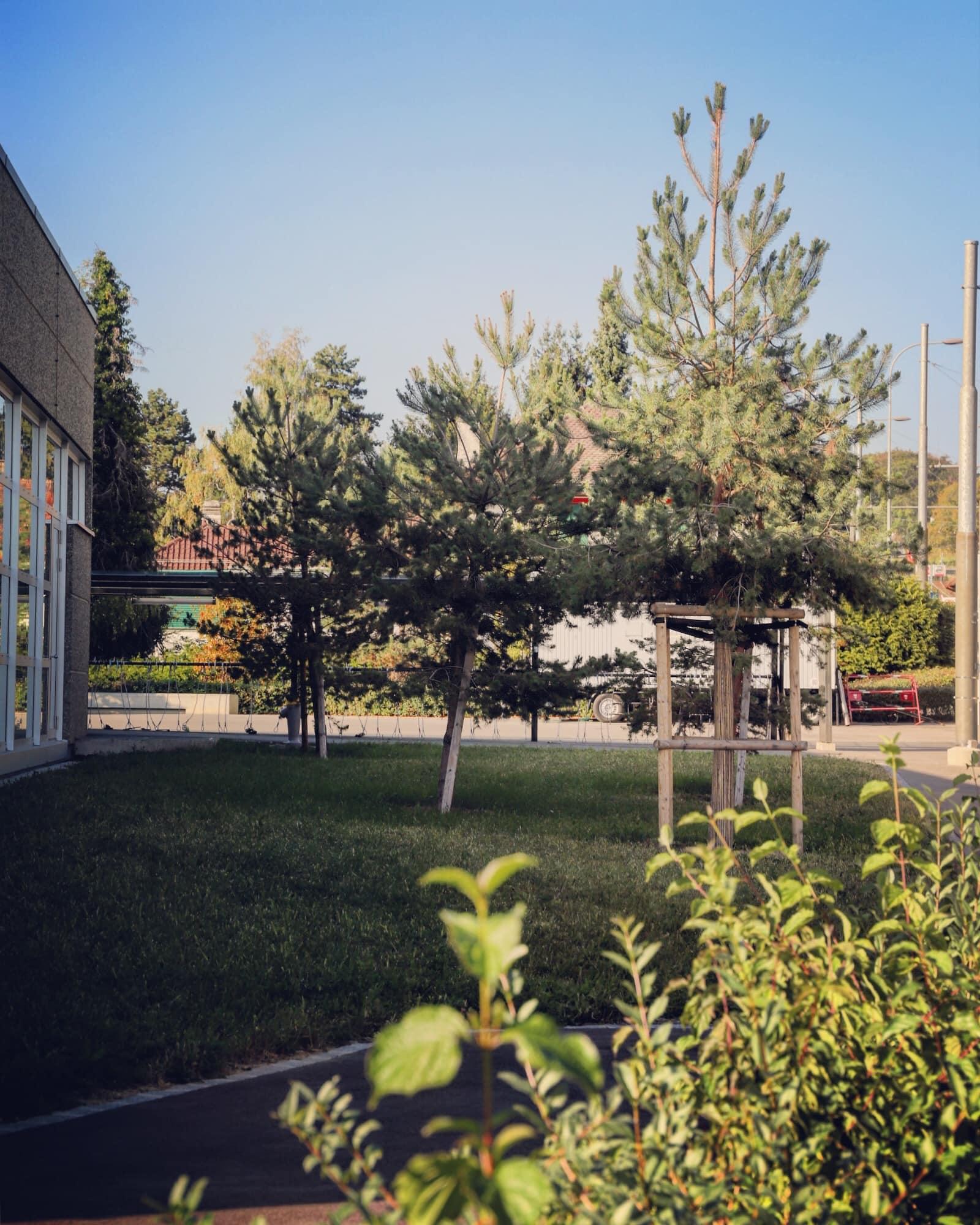 Collège du Mottier 10