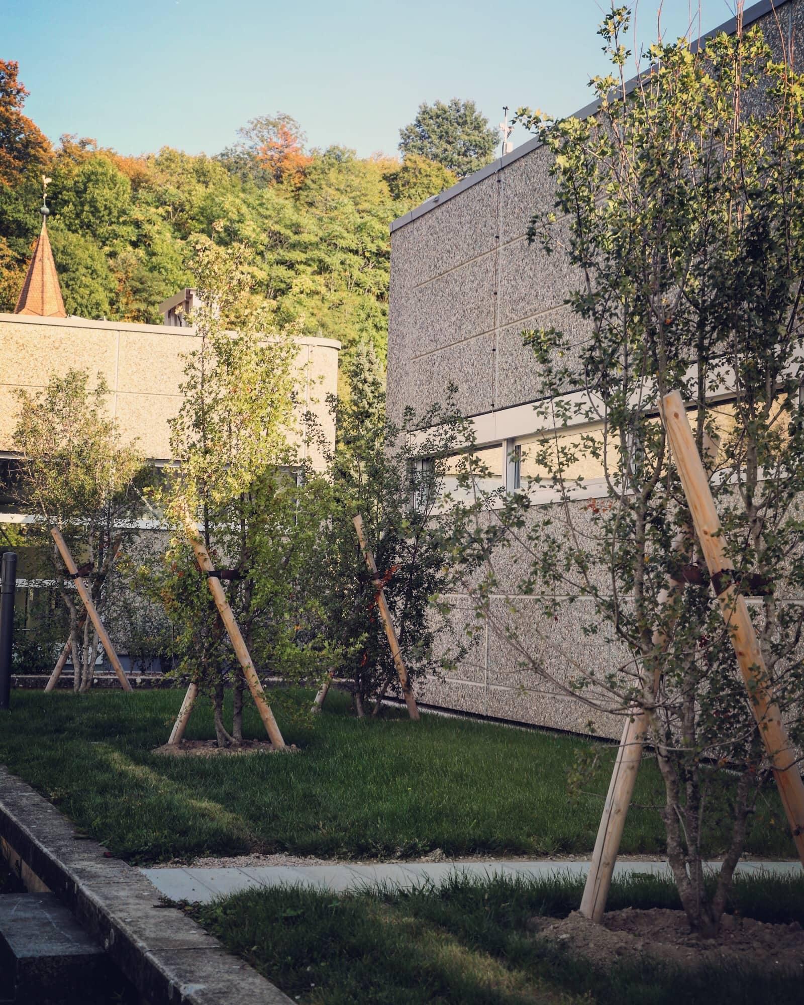 Collège du Mottier 11