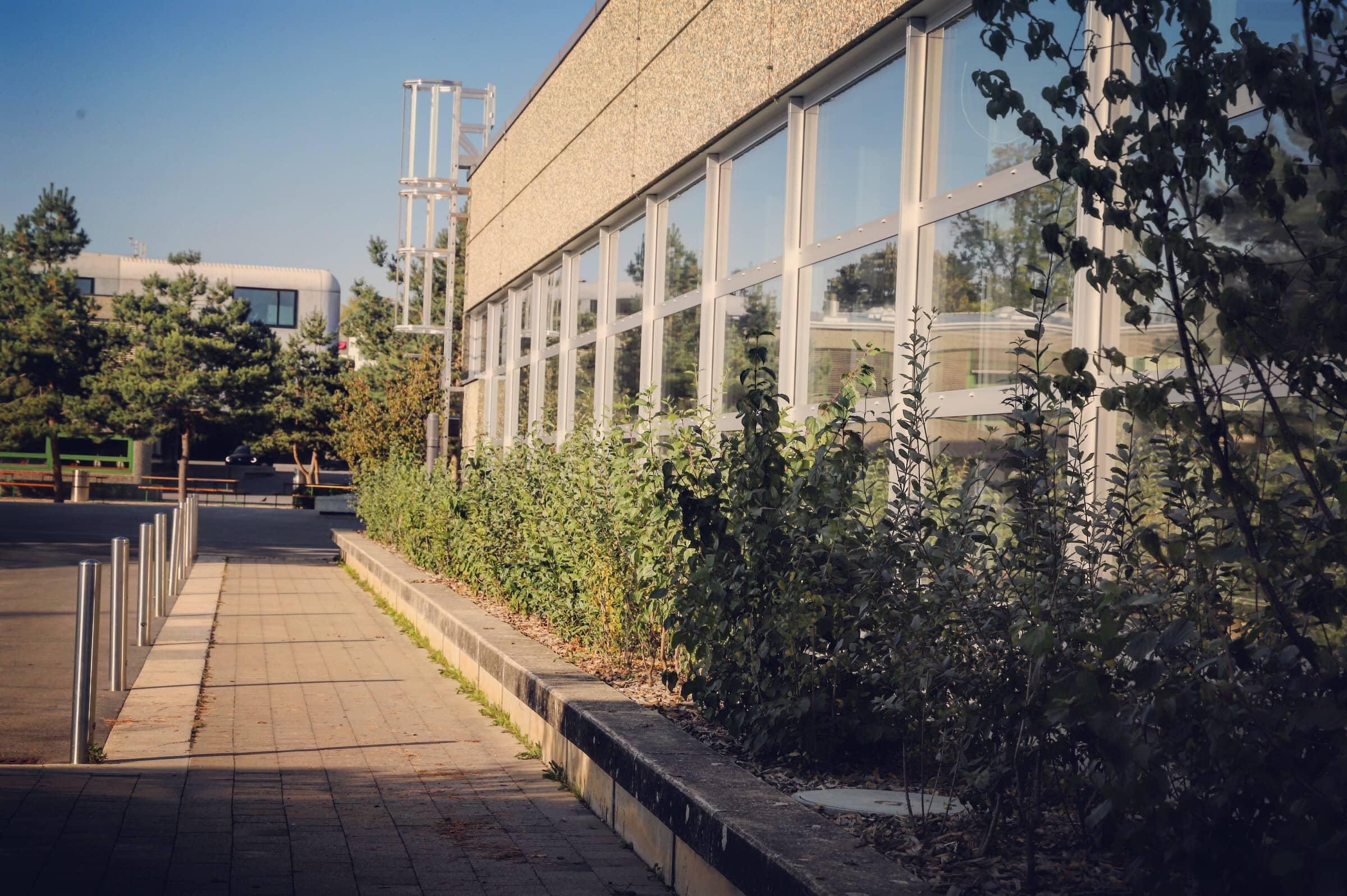 Collège du Mottier 8
